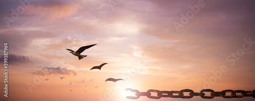 Obraz Freedom concept: Silhouette of bird flying and broken chains at sky sunset background - fototapety do salonu