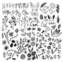 A Set Of Monochrome Floral Elements. Vector Illustration
