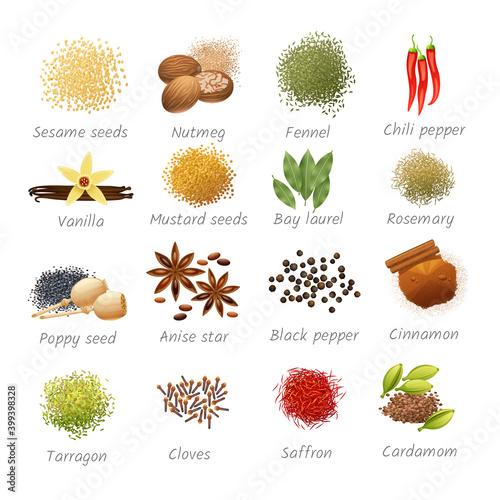 Fototapeta Icons Set Of Spices