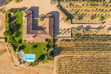 Aerial View Of Vineyard Estate, Portugal.
