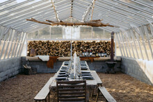 Dreamy Long Dinner Table In Glass Greenhouse