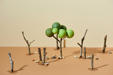 Felled Trees In Logging Forest Paper Cut Hand Craft.