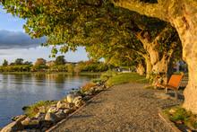 Germany, Baden-Wurttemberg,ÔøΩRadolfzell,ÔøΩEmpty Park Bench On Shore Of Lake Constance At Dusk