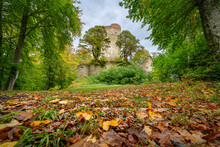 Germany, Baden-Wurttemberg, Bodman-Ludwigshafen, Fallen Leaves Lying On Ground In Autumn With Ruins OfÔøΩBurg Altbodman Standing In Background