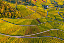Germany, Baden-Wurttemberg, Rotenberg, Aerial View Of Vast Countryside Vineyards At Autumn Dusk
