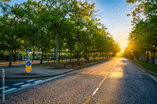Fotografering Empty road with morning sun flare