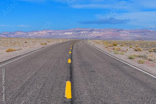 Slika na platnu Freshly painted yellow lines on a desert road in Nevada, USA