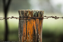 An Old Weathered Worn Fence Post On Rural Farmland With Strands Of Rusting Barbed Wire Against A Soft Focus Green Backgorund. New South Wales, Australia.