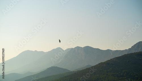 Stampa su Tela Background image of bird flying with Sveti Jure mountain, Croatia