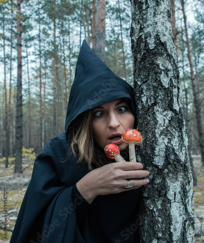 Fotografia, Obraz A witch in a black hood and with red fly agarics conjures in the forest