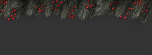 Spruce Branches And Red Berries On Dark Background.