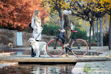 Two Beautiful Friends Talking While Walking With Their Dog And Bike On A Bridge In Autumn.