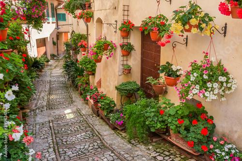 Fototapety, obrazy: street in the village of island