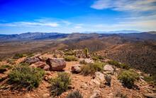 View From Ryan Mountain, Joshua Tree National Park, California