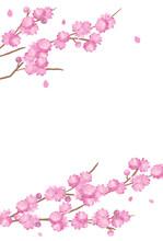 Peach Blossom Background Spring Flower Hinamatsuri