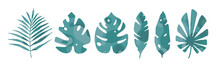 Leaf Set. Abstract Icon Green Tropical Leaves On White Backdrop. Tropical Nature. Minimal Nature Concept. Graphic Design Element. Tropical Palm Leaves, Forest Trendy Retro Style. Vector Illustration