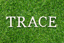 Wood Alphabet Letter In Word Trace On Green Grass Background