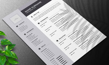 Resume Layout With Gray Accents