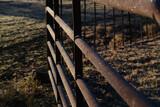 Fototapeta Konie - Frost on farm gate, cold winter weather concept.