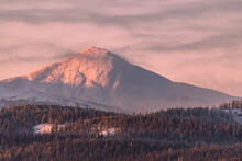 Pink Winter Sunrise View On Snow Capped Mountains And Woods, Forest Below In Northern Canada. Pastel Tones On The Side Of A Mountain Top.