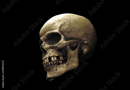 Photo Human skull with an open lower jaw on a Black isolated background