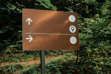 Broen Track Pointer In The Deep Forest. The Abstract Concept For Different Choice, Decision, Or The Distinctive Opinion.