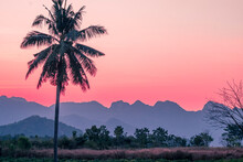 Silhouette Palm  Coconut Tree With Mountains On Background  Horizon Hills In Kanchanaburi Thailand At Sunet