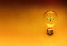 Natural Or Green Power Idea Is The Way For Future, Save World And Energy Concept, Light Bulb With Green Plant In Side On Bright Gold Background