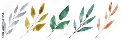 Fotografie, Obraz Set with watercolor twigs with leaves