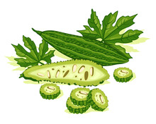 Bitter Melon Vegetables With Green Leaf. Good Organic Food For Healthy. Bitter Gourd Vector Design