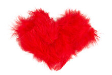 Red Feather Heart Isolated On White Background