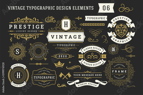 Vintage typographic decorative ornament design elements set vector illustration Fototapeta