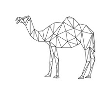 Isolated Camel In Low Poly Style On White Background. Polygonal Illustration Of An Animal Desert Consisting Of Triangles. Geometric Design For The Logo, For Printing On Clothes Or Poster. Vector.