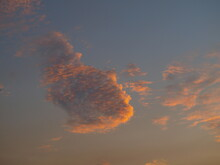 A Cloud Goldfish Swimming In The Sky