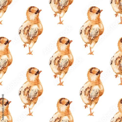 Foto Seamless pattern with watercolor image of chicken.