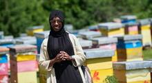 African Muslim Businesswoman Portrait On Small Local Honey Production Farm
