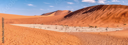 Canvas view of whole valley with dead acacia tree in hidden Dead Vlei landscape, Namib
