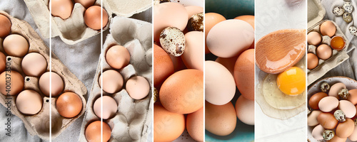 Canvas Print Raw chicken eggs collage. Food concept.
