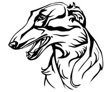 Decorative Portrait Russian Wolfhound Kids Coloring Page Line Art Illustration Vector
