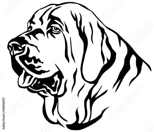 Fototapety, obrazy: decorative portrait spanish mastiff kids coloring page line art illustration vector