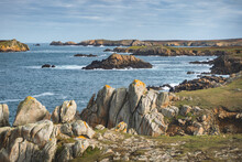 Ouessant, Sauvage II