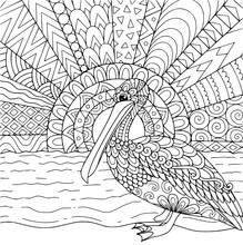 Pelican Kids Coloring Page Line Art Illustration Vector