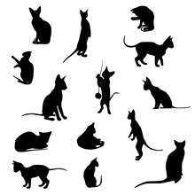 Set Cats Silhouettes Kids Coloring Page Line Art Illustration Vector