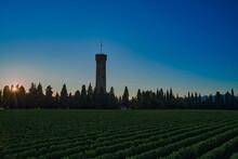 Tower Of San Martino Della Battaglia, Italy. Sunset. Vineyards Of Italy On Lake Garda Italy. Celebration Of The Italian Risorgimento. Aerial View Of Lake Garda