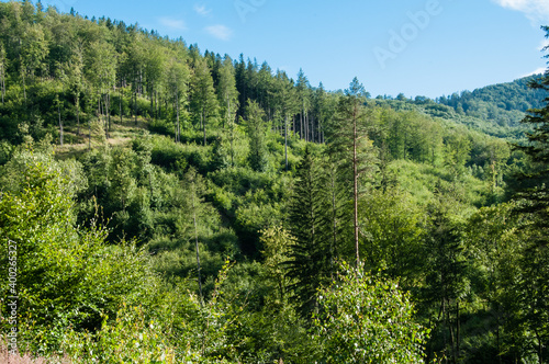 Widok na góry porośnięte lasem. Ponad górami niebieskie niebo. © Andrzej