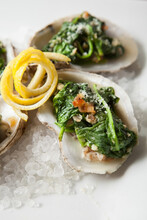 Fresh Oyster Meal