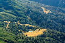 Ukraine, Zakarpattia Region, Rakhiv District, Carpathians, Chornohora, Chornohora Ridge, Landscape With Forest And Pond