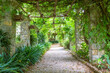 canvas print picture - Garden with Pergola structure during summer season. Architecture and design inspired by nature.