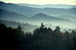 Bergpanorama im Schwarzwald im Gegenlicht