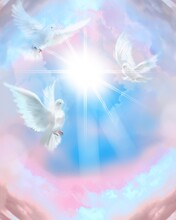 The Flying Three White Doves Around Clouds Leading To Shining Heaven And The Background Of Beautiful Pastel Color's Sky And Fluffy Feathers